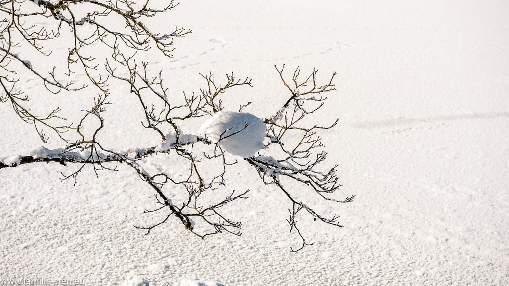 Ausflug zum Königssee im Winter